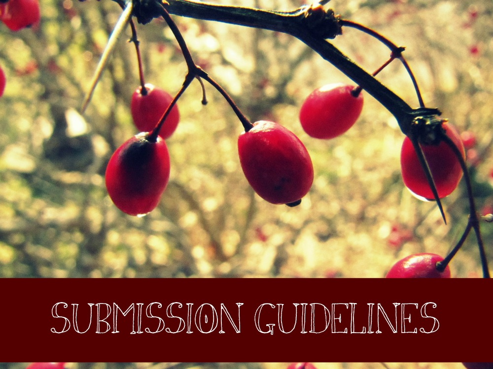 submission-guidelines-photo