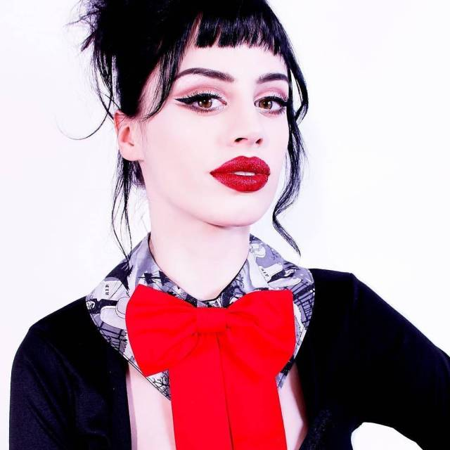 Haunted house glitter collar with black facing and red bowhellip