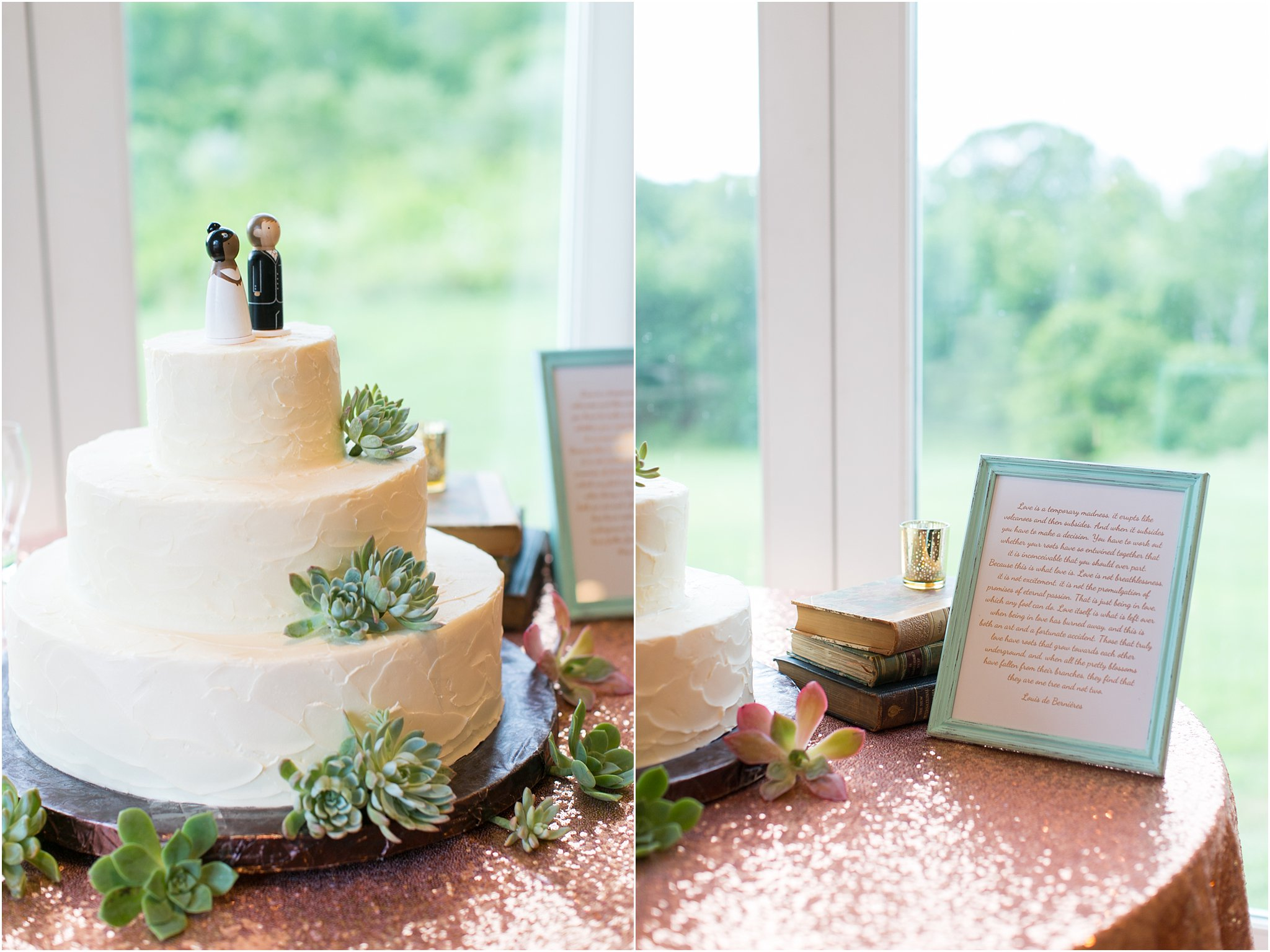 jessica_ryan_photography_virginia__middleburg_briar_patch_bed_and_breakfast_mountainside_wedding_Virginia_wedding_photographer_stella_york_wedding_dress_wedding_2596