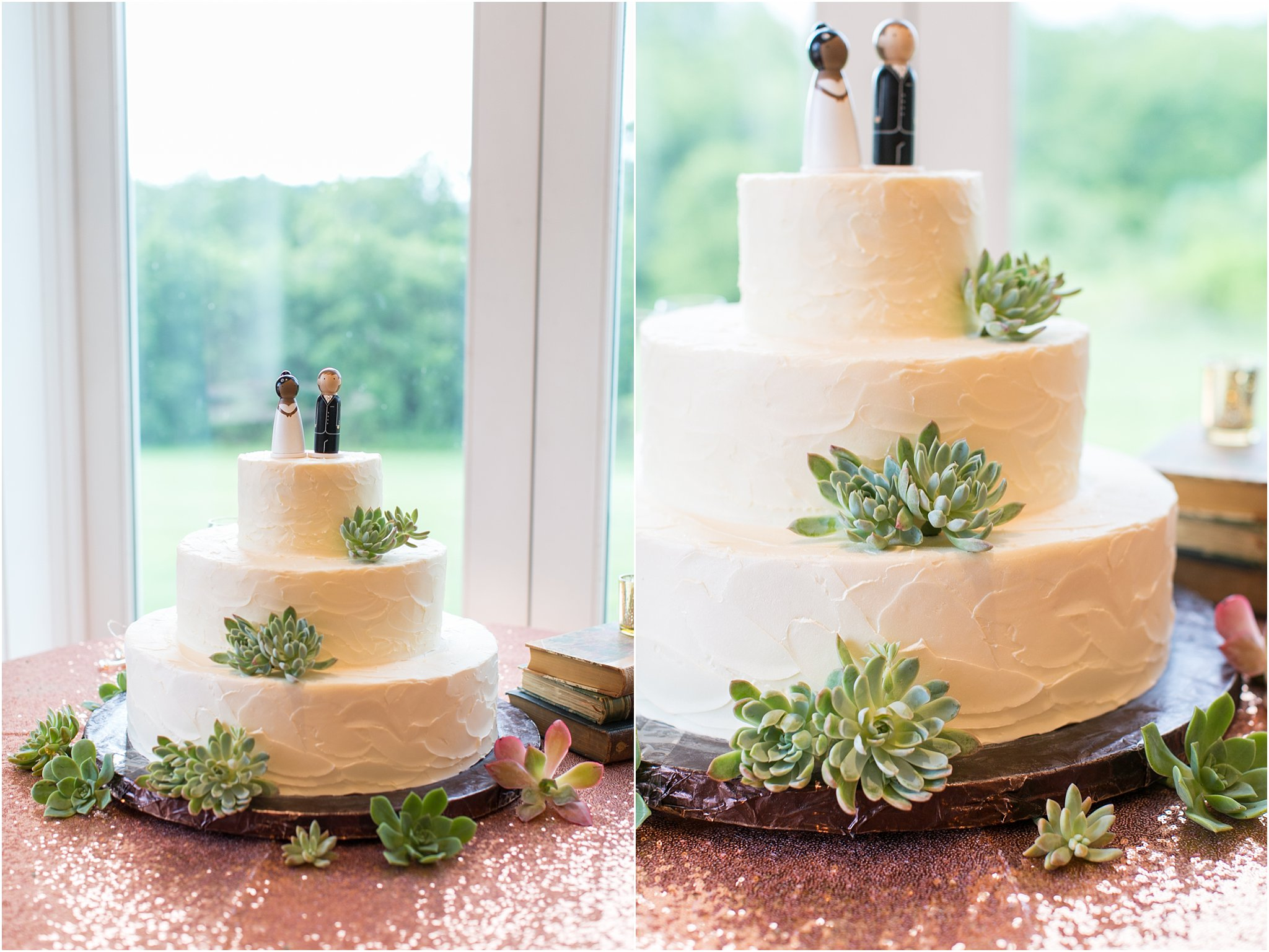 jessica_ryan_photography_virginia__middleburg_briar_patch_bed_and_breakfast_mountainside_wedding_Virginia_wedding_photographer_stella_york_wedding_dress_wedding_2597
