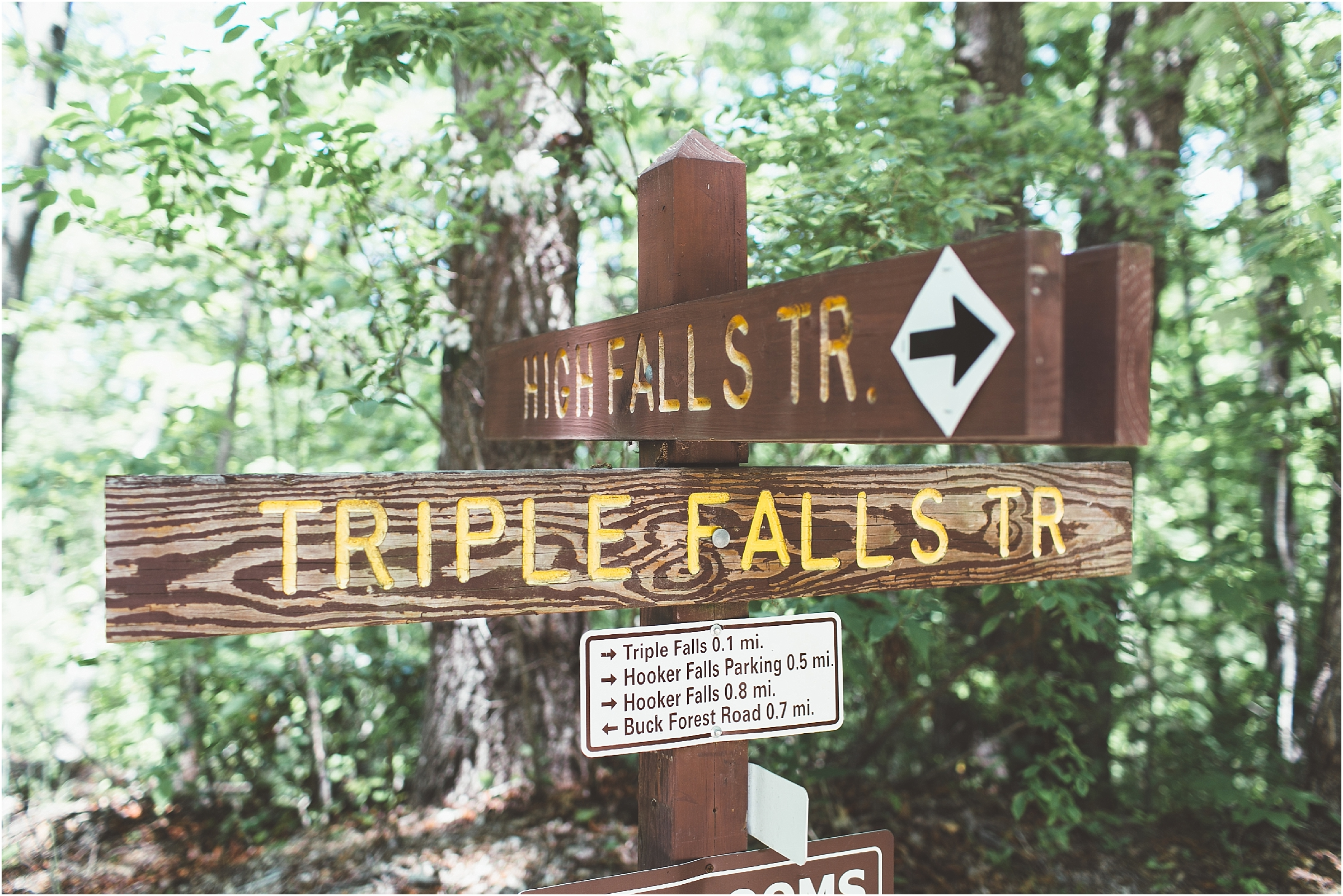 asheville north carolina honeymoon wedding photographer triple falls trail