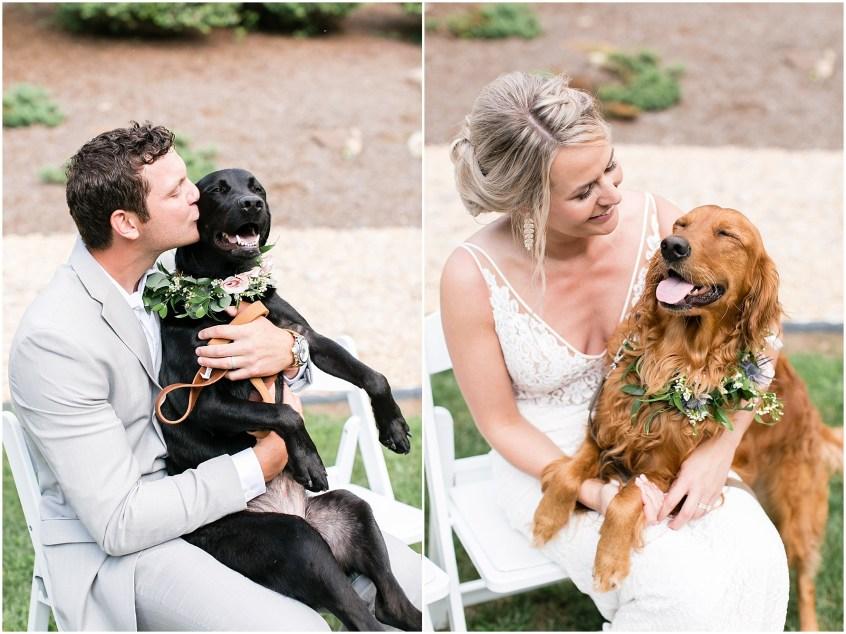 house mountain inn wedding lexington Virginia, bride and groom photography, dogs at weddings