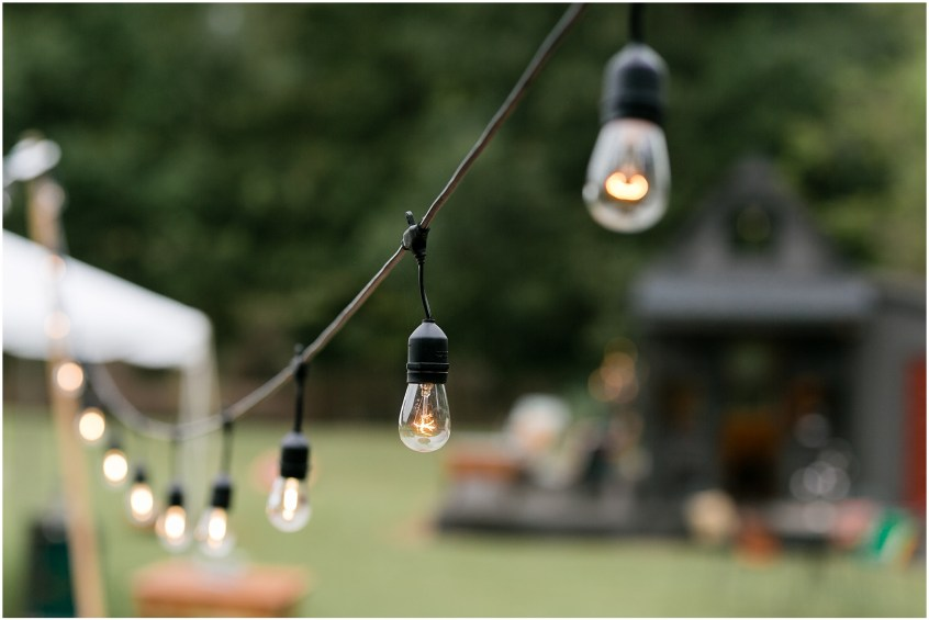 richmond casual backyard wedding reception, string lights