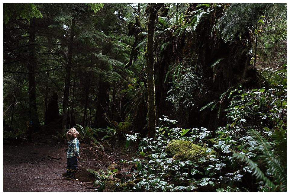 Tacoma Family Photographer_0238