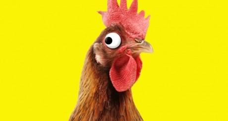 kurczak KFC jestesmyfajni