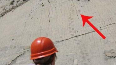 Naukowcy znaleźli ślady dinozaurów w najdziwniejszym miejscu: na 300 metrowej ścianie!