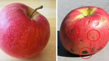 Za pomocą jabłek zobrazował problem dręczenia w szkole. Każdy powinien to przeczytać!