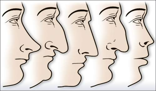 The-Shape-of-Your-Nose-is-not-a-Coincidence-and-Says-a-lot-About-You