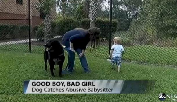 dog-baby5