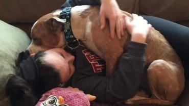 Uratowany ze schroniska psiak, całe dnie potrafi spędzić przytulając się do swojej właścicielki!