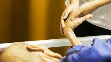 Pielęgniarka w hospicjum pytała pacjentów przed śmiercią, czego najbardziej żałują w życiu. 5 odpowiedzi powtarzało się niezwykle często….