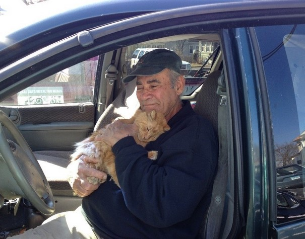 This man has been feeding stray cats for 22 years. In that time he hasn't missed a day! 2