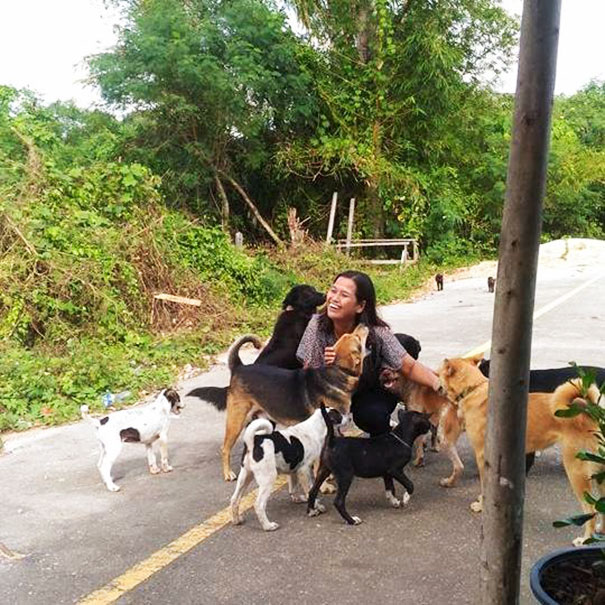 Meet Tau Plu. This stray dog knows how to thank people for food. He showers the woman feeding him with gifts. He's disarming! 3