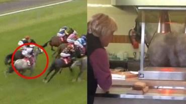 Klacz uciekła po wyścigu, podczas gdy wszyscy jej szukali, ona odnalazła się… w barze sałatkowym