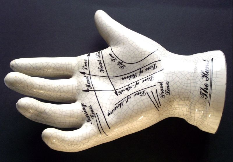 Your little finger will tell you a lot of interesting things. All you have to do is look at it and compare the length of its phalanges! 2
