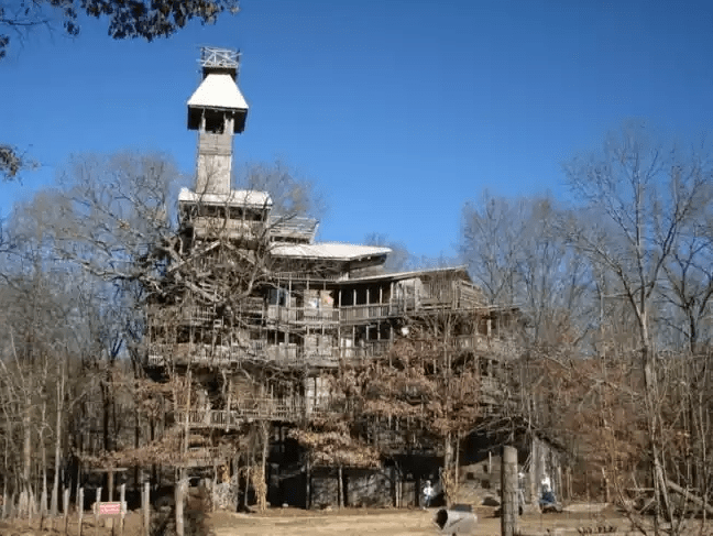 It took Horace 15 years to build the largest tree house. The wooden house has 10 floors. 3