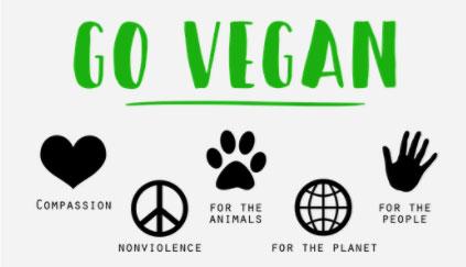 Uwaga, wiele na pozór wegańskich produktów ma zwierzęce komponenty! Lista rzeczy, których powinni unikać weganie, na pewno Was zaskoczy
