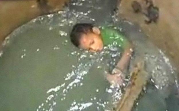 Gulia wpadła do otwartej studzienki kanalizacyjnej. Niebezpieczny i wyjątkowo paskudny upadek skończył się lepiej niż mogła śnić