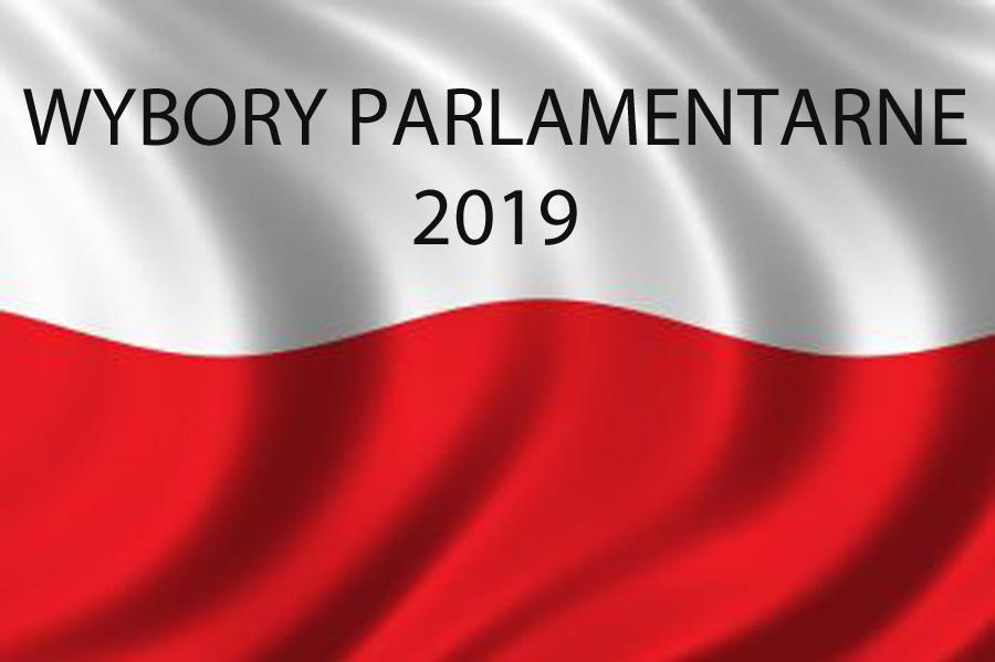 Najciekawsi kandydaci w wyborach parlamentarnych 2019. Trudno przejść obojętnie obok tych plakatów