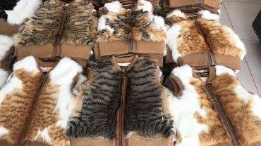 Chińczycy robią kamizelki z bezpańskich kotów. Sprawdź, może masz taką w szafie!