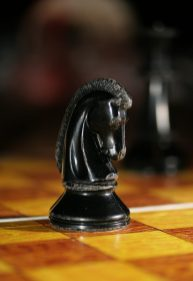 Chess_knight_0965