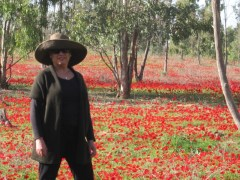 Judy Isaacson, Holy Land Tours