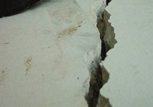 Concrete cracks are typically caused by changes in the soil, which causes house settling and can damage your home's foundation.