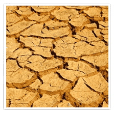 Drying & Shrinking Soils