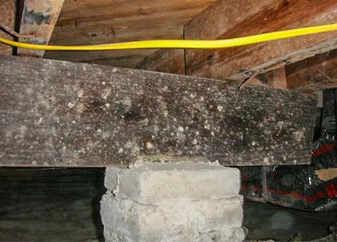 Over Spanned Floor Joists