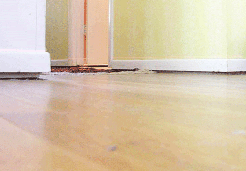floor and wall gaps