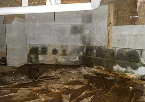 A Crawl space vapor barrier is supposed to protect your crawl space - not endanger it