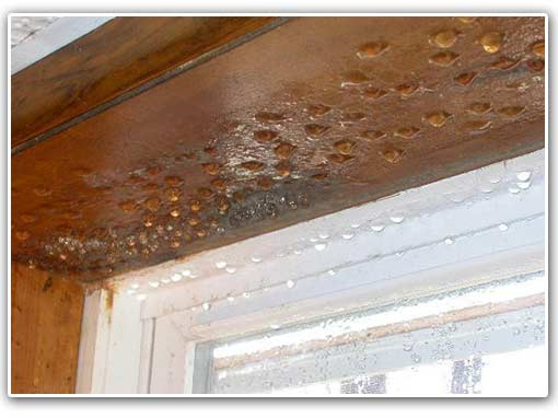 Windows on your first floor can 'sweat' from the humidity in your basement.