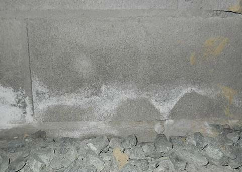 When a basement isn't protected or sealed off from water vapors, efflorescence on basement walls will appear