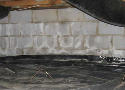 efflorescence on basement walls means water is slowly coming through the wall or floor.