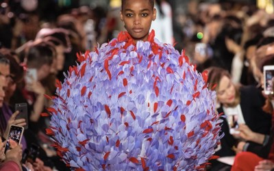 "Schiaparelli Haute Couture (P.E 2019) FLOREA URSAE MAJORIS ""Dream of Star's flowers"""