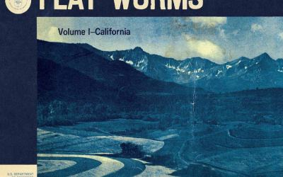 Flat Worms – The Aughts (Extrait de Antarctica)