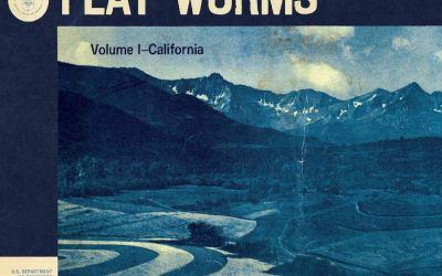 Flat Worms – The Aughts (Extrait de Antarctica)