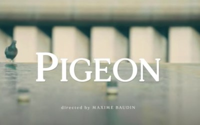 The Supermen Lovers · Pigeon