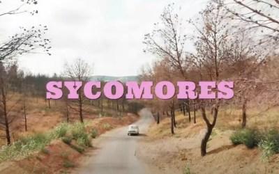 MARGAUX SIMONE – Sycomores