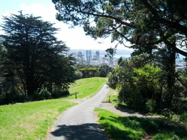 Wellington CBD from  Central Park.