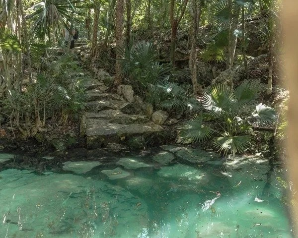 Beautiful clear water with Garra rufa fish at cenote azul.