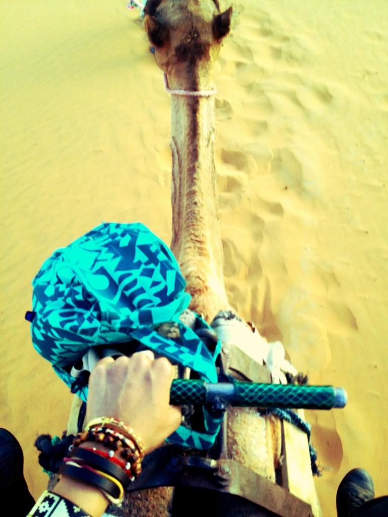 KO-Jetsetter Problems-ride a camel like a badass 3