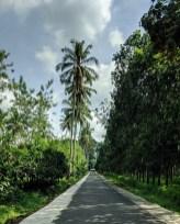 Road to Ijen, Java
