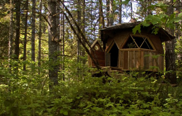 In case you're missing the forest for the trees, here are a few reminders why woodlands are wonderful. Jetson Green Tiny Forest Home Made Of Reclaimed Materials