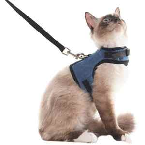 Harnais et plomb pour chat Escape Proof – Harnais ajustable en maille souple pour chatons de chiot Lapins, L