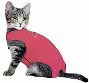 MAXX Medical Pet Clothing & Recovery Cat Shirt E Collar Alternative for Post Surgery, Wounds and Bandages – (2XS, Pink)