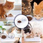 HENJI Double Bol pour Chat,Gamelle pour Chat Anti-dérapant Bol de Nourriture,pour la Nourriture et l'eau, Gamelle Amovible pour Chats et Chiens de Petite Taille (Couleur Transparente)