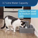 PetSafe Drinkwell Fontaine pour Animaux domestiques de Taille Moyenne, Design Facile à Nettoyer, Filtre Inclus, 3,7 litres