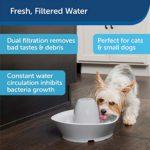PetSafe Streamside Fontaine en céramique pour Animaux domestiques, capacité d'eau 1,8 Litre, Design Silencieux, Eau filtrée, Encourage Les Animaux à Boire Plus d'eau