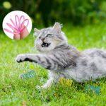 Gejoy 12 Pièces Jouet Coloré de Chat de Printemps Jouet de Ressorts en Spirale en Plastique Interactifs Durables pour Cadeau de Nouveauté pour Animaux de Compagnie Chaton de Chat